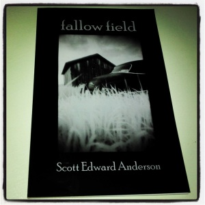 Fallow Field cover